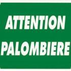 Panneau Attention Palombière. Dimensions 30 x 25 cm
