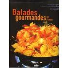 ballades gourmandes en FRANCE. recettes diverses  , cuisine facile