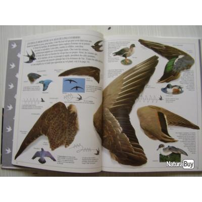 Les livres sur les plumes  __00006_livre-Le-nid-l-oeuf-l-oiseau-GALLIMARD