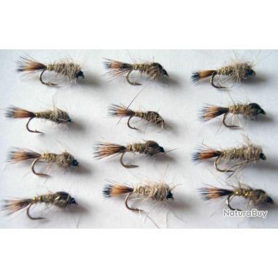 lot de 10 nymphes oreille de lièvre