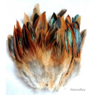 acheter des plumes