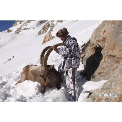 Chasse de l'Ibex de Sibérie au Kirghiztan