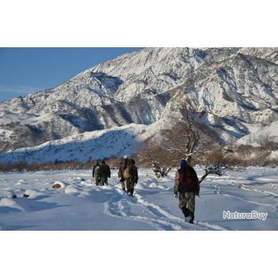 Chasse du Sanglier de Montagne au Tadjikistan