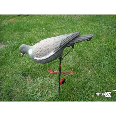 pigeon appelant electrique qui picore man ges et pigeons lectriques 1440519. Black Bedroom Furniture Sets. Home Design Ideas