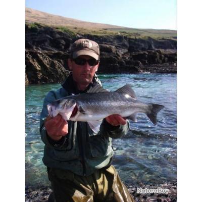 Pêche du Bar à la Mouche en Irlande