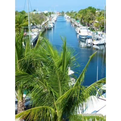 Voyage de Pêche aux USA : Floride