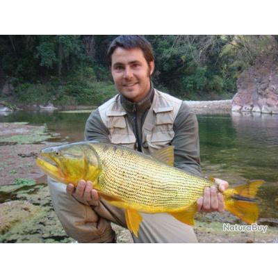 Voyage de Pêche en Argentine :  Dorados des Yungas