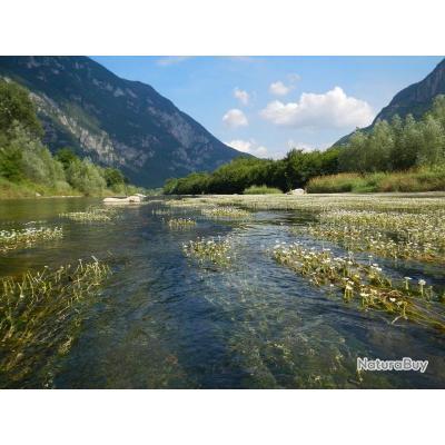 Voyage de Pêche en Italie : Plaine du Pô