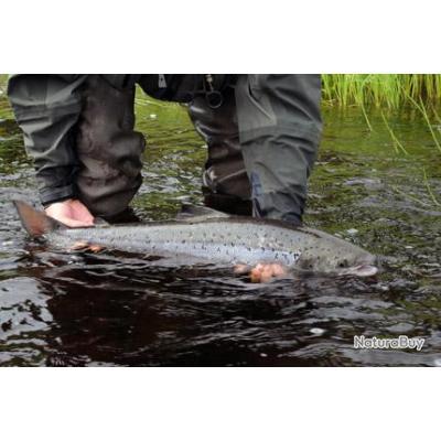 Pêche en Russie - Péninsule de Kola - Chawanga