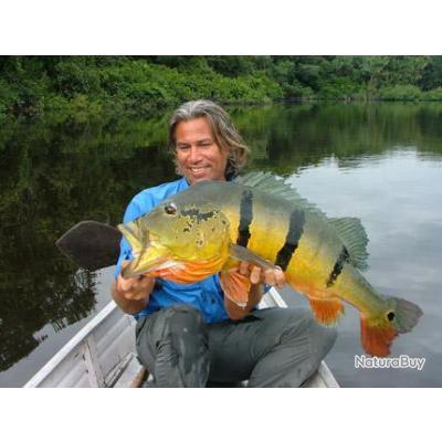 Voyage de Pêche au Brésil : Les Peacocks Bass de l?Amazone