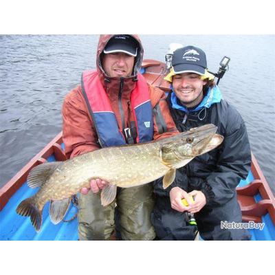 Voyage de Pêche en Irlande : Formule Rêve