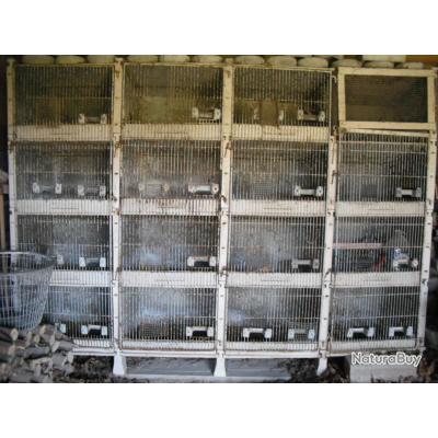 Lapins occasion clapiers b ton de 6 clapiers b ton de 6 cases avec pictures to pin on pinterest - Clapier lapin beton ...