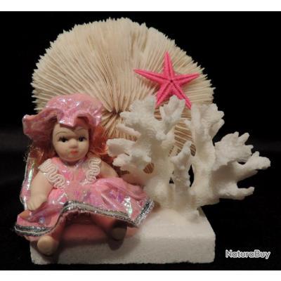 corail poup e rose avec fungia fungites sur troph e taxidermie coquillage. Black Bedroom Furniture Sets. Home Design Ideas