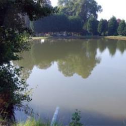 étang truite hasnon