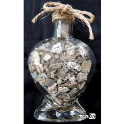 Bouteille coquillages d coration maison coquillage cadeau mariage mer coquillages crustac s - Decoration coquillage mer ...