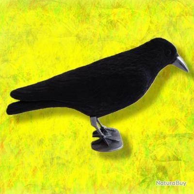 corbeau floqu formes plastiques 2164102. Black Bedroom Furniture Sets. Home Design Ideas