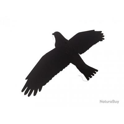corneille floquée ailes déployées