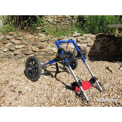 chariot chien handicap tapis ducateurs 2255433. Black Bedroom Furniture Sets. Home Design Ideas