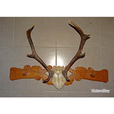 Porte manteaux en bois sculpt avec t te de cerf - Tete de cerf en bois ...