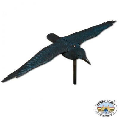 corbeau ailes d ploy es formes plastiques 2484418. Black Bedroom Furniture Sets. Home Design Ideas