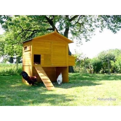 poulailler 18 20 poules coq volaille pintade abri poule caille 13cl poulaillers clapiers. Black Bedroom Furniture Sets. Home Design Ideas