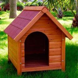 Niche chien taille s abri chien niche chat niche avec for Abri exterieur chat