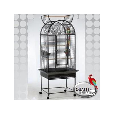 cage perroquet eclectus cacatoes voli re cage amazone gris. Black Bedroom Furniture Sets. Home Design Ideas