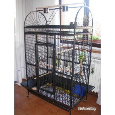 voli re geante cage ara cage gris du gabon amazone. Black Bedroom Furniture Sets. Home Design Ideas