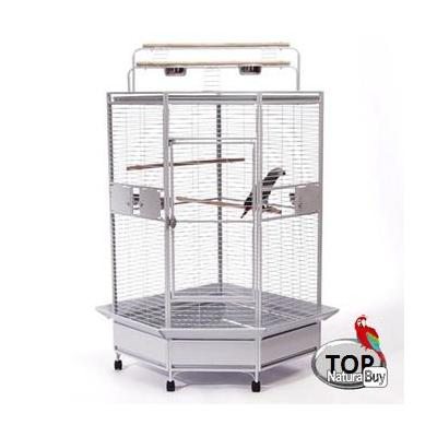 cage perroquet cage gris du gabon amazone voliere eclectus. Black Bedroom Furniture Sets. Home Design Ideas