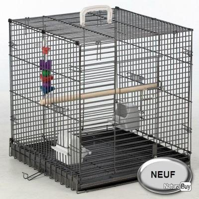 cage de transport perroquet gris du gabon amazon eclectus. Black Bedroom Furniture Sets. Home Design Ideas