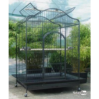 voliere geante cage ara amazone gris du gabon cage. Black Bedroom Furniture Sets. Home Design Ideas