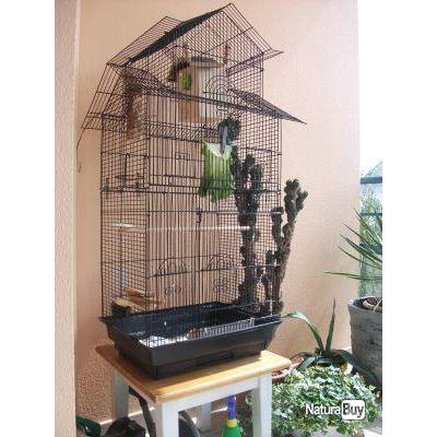 cage oiseau canaris ins parable mandarin neuf 13o cages oiseaux et voli res 2725574. Black Bedroom Furniture Sets. Home Design Ideas