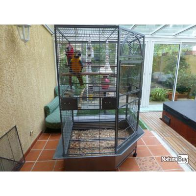 voli re geante ara cage gris gabon cacatoes 13o cages. Black Bedroom Furniture Sets. Home Design Ideas