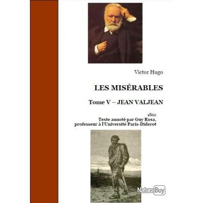 an overview of the novel les miserables by victor hugo Yes, i'm attempting to review les miserables, in around 1000 words i'm going there i think the thing i loved most about les miserables, apart from the fact that someone managed to make a musical out of it, is that hugo persistently does everything we were told not to do in creative writing class obviously.