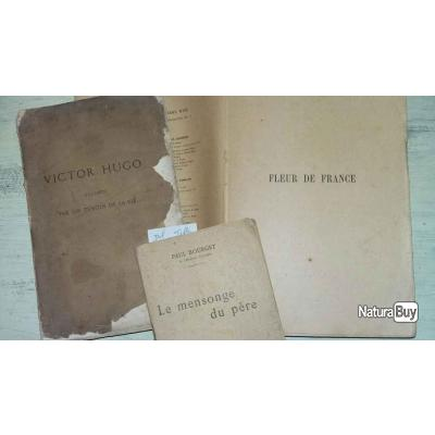 3 Livres Anciens Victor Hugo P Mael P Bourget