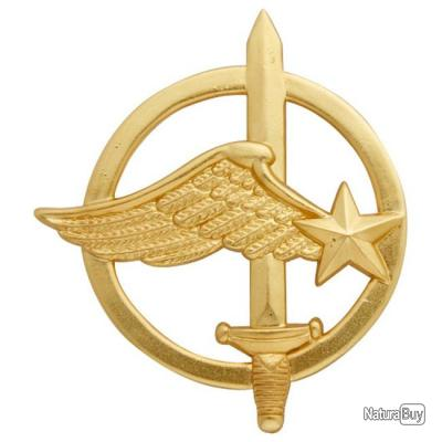 insigne de b ret or commando de l 39 air insigne militaire arm e francaise insignes de beret. Black Bedroom Furniture Sets. Home Design Ideas