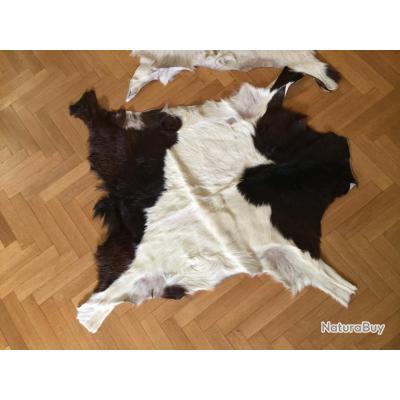 deux peaux de ch vre de couleur brune et blanche peaux tannages 3255776. Black Bedroom Furniture Sets. Home Design Ideas