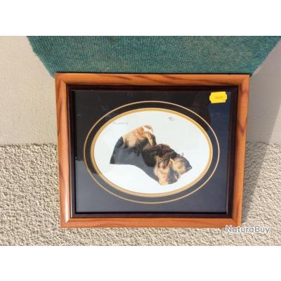 Cadre d'un chien Saint-Hubert réalisé par un artiste