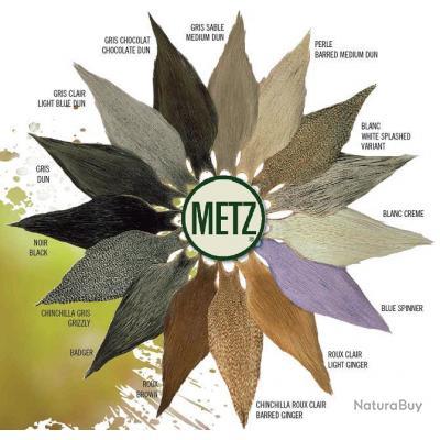 Cou de coq Metz grade  2 teint Blue spinner
