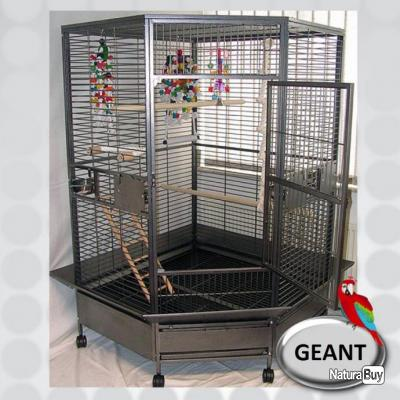 cage perroquet xxl voliere geante cage ara gris du gabon amazone eclectus cacatoes top 13o. Black Bedroom Furniture Sets. Home Design Ideas