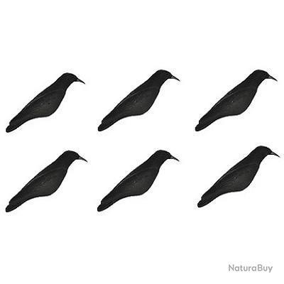 Corbeau floqué 1/2 coque x6