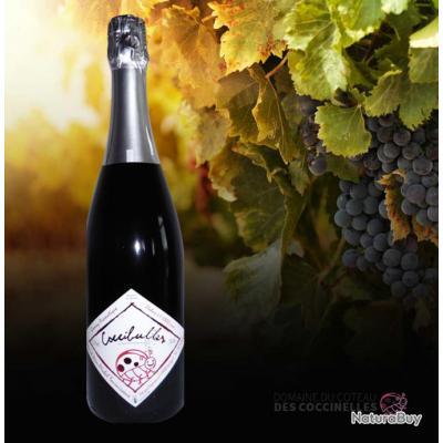 Vin Mousseux Rosé COCCIBULES 100% Gamay (pétillant moelleux)
