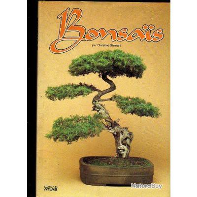 Jardinage d\'intérieur ou bonsaï + l\'art des bonsaï de chez rustica ...
