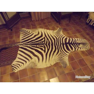 peau de zebre du kenya