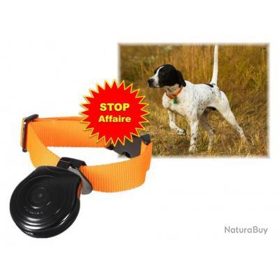 Caméra pour chien de chasse - Caméras embarquées (4439942)
