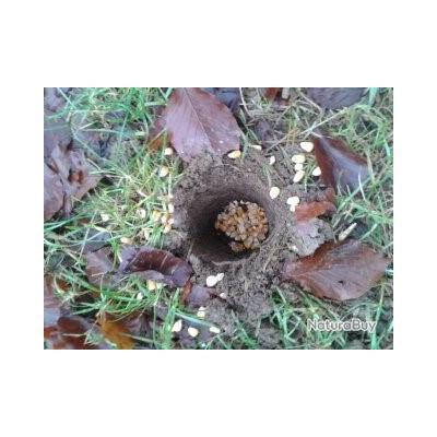 tarrière pour creuser ( pour enterrer du maïs )