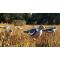 petites annonces chasse pêche : Formes HD Birdvision par 5! Destockage