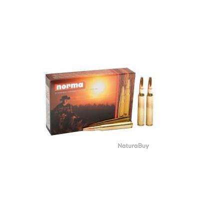 LOT DE 20 Balles neuves  calibre 280 REM Norma PPDC pointe plastique 170gr 11g