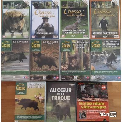 DVD Chasse Sanglier
