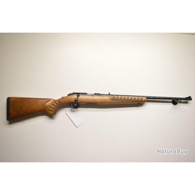 carabine ruger american rimfire